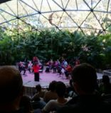 Orchestra Miami's 2019-20 Family Fun Series at Pinecrest Gardens