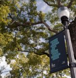 Coconut Grove banners are pieces of art