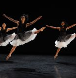 Daniel Lewis Dance Sampler takes show online