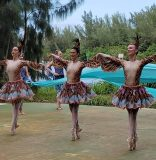 Despite pandemic, Dimensions Dance Theatre of Miami to unveil new works