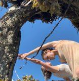 Festival ScreenDance Miami: la danza en función de la cámara