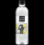 Miami artist Adler Guerrier's work graces LIFEWTR's Black Art Rising Series water bottles